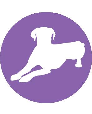Iconos-Perros-02